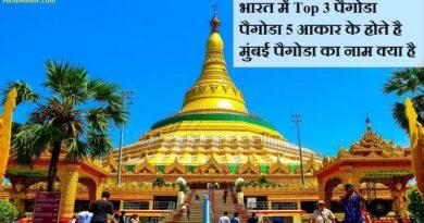 pagoda in hindi